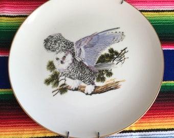 Vintage Owl, Louis Raymer Owl Plate