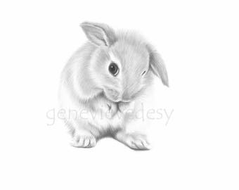 Black and white bunny art print - Nursery Art Print - Cheeky Baby Bunny