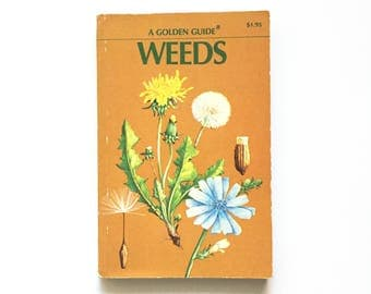 Vintage Golden Guide- Weeds / Book on Weeds / Plant Book / Science Botany Book / Homeschool Book