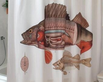 Shower curtain fish for shower O. Bath shower