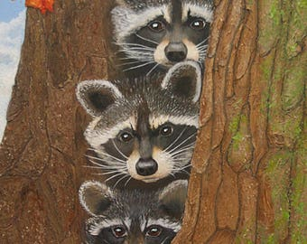 Tree Top Trio Baby Raccoons 24x18 Inch Wrapped Canvas Acrylic Painting