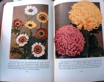 Garden Flowers in Color 1935