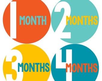 Monthly Baby Milestone Stickers Baby Boy Baby Shower Gift One-Piece Baby Stickers Monthly Baby Stickers Baby Month Sticker 297