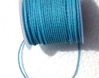 2 meters of light blue twisted cord