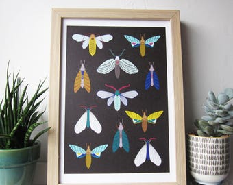 Moth illustration, hand drawn moths giclee print on dark background A4 size