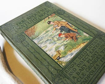 Childrens Nature book Illustrated plands and animals picture book Guide Vintage Attractive 1920s childrens nature Guide