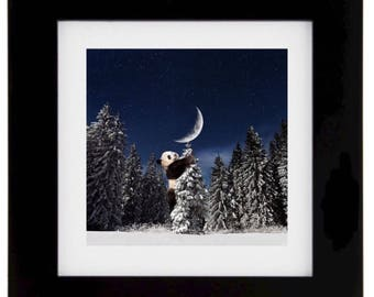 Chasing the moon, panda, panda photography, surrealism,landscape photography, winter photography, christmas tree, moon photography, woods,
