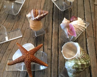 Vintage Seashell Acrylic Lucite Napkin Rings 1970s
