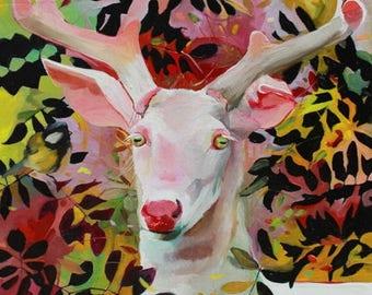 Fine Art Print of White Deer