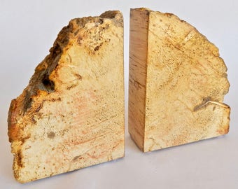 Golden Petrified Wood Bookends (AZ141)