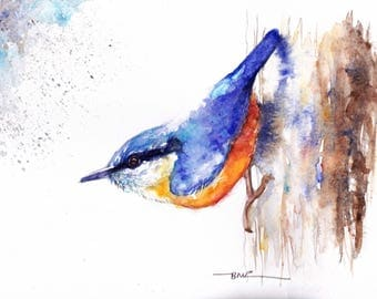 Original Watercolour Nuthatch Print by Artist Be Coventry Wildlife Animal Art