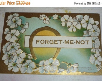 ON SALE till 7/28 Horse Shoe and White Flowers Forget-Me-Not Antique Greeting Postcard