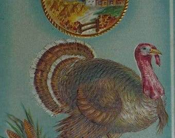 ON SALE Turkey With Harvest Fruits and Vegatables, and Scene Antique Thanksgiving Postcard