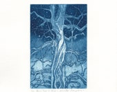 Etching of a Tree - 'Paris Tree in Blue' an etching by Jennifer Rampling