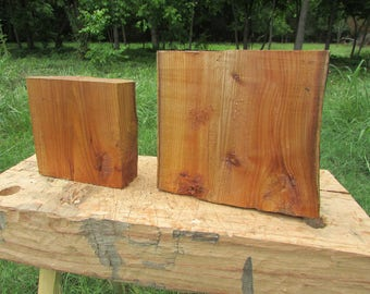 Red elm bowl blanks