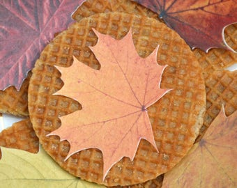 Edible Maple Leaves Autumn Fall Rustic Orange Wedding Cake Pop Decoration Wafer Rice Paper Boho Leaf Cupcake Toppers Thanksgiving Cookie