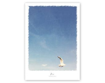 Print, poster, fly, seagull poster, poster sky, small poster, blue sky poster, print of seagull, hamburg poster, clean poster, gull