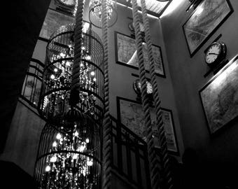 Black and White Chandelier Photo