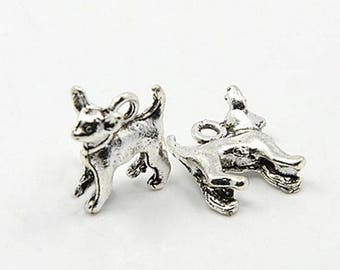 15 Chihuahua Dog Pet Canine Tibetan Silver Charms (556)