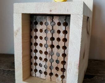Native Blue Orchard Mason Bee Complete Package