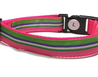 Dog Collar, Stripes Green and Pink