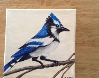 """Blue Jay Acrylic painting on canvas . The Size is 6"""" x 6""""  The edge  is 1 3/4"""" thick  27.00"""