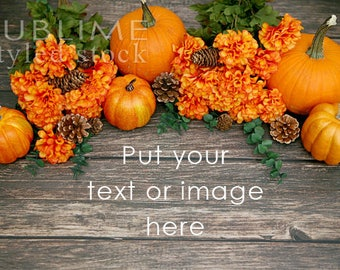 Fall Background /  Fall Styled Stock Photography / Wood Background / Pumpkins, Mums / Pumpkins on wood / Social Media Stock / StockStyle-874