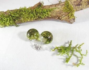 Moss earrings, nature resin earrings, real moss jewelry, resin orbs, moss globe studs