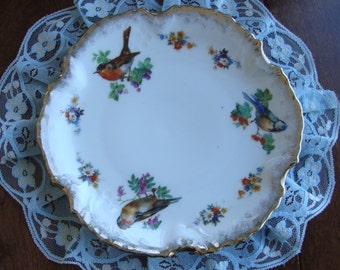 Kuno Steinmann Silesia Porcelain - Hand Painted Serving or Cabinet Plate - Three Different Birds, Brushed Gold Trim