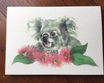 Koala and gumnut blossoms