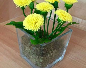 Home Décor-Floral Arrangements-Dried Flower Arrangements- Dandelions-polymer clay-cold porcelain-Flower Polymer Clay- Gift- Mother's day