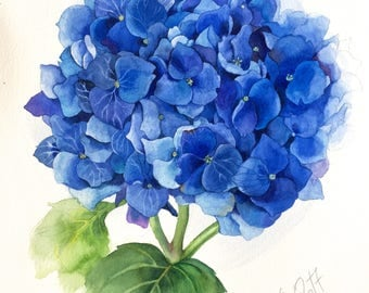 ORIGINAL blue Hydrangea, watercolor still life, flower, illustration, botanical art, gift, wall decor