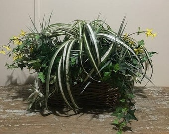 Hand Made Plant Arrangement in a Wicker Basket Made with different Faux Plants