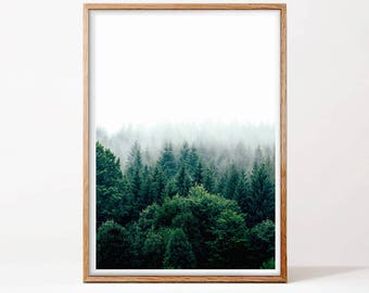 Forest Print, Forest Wall Art, Wilderness Poster, Forest Photography, Nature Prints, Forest Art, Woodland Prints, Modern, Printable Art