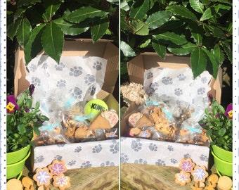 Handmade/homemade  natural dog treats/biscuits  Summer/ birthday Box, all natural, no nasties