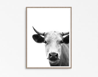 Farmhouse decor, Cow Print, Rustic Home Decor, Country Cottage Wall Art, Black and White Farm Animal Photo, Large Printable Poster Download