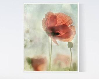 Meadow prints Poppies print Cottage wall art Like painting Wall art decor PRINTABLES Poppy watercolor 8x10 Nursery art Flowers printable
