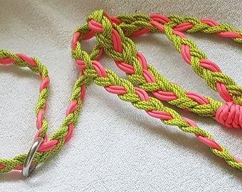 Paracord Training Slip Leash and collar combo