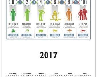 Classic Design Pain Scale 2017 Calendar