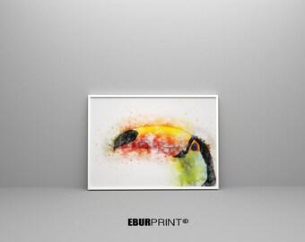 Toucan print, tropical bird, watercolor print, toucan painting, bird art, birs wall art, print of toucan bird, modern art, Poster Tropical