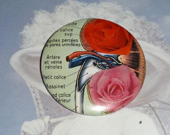I'm exhausted!  Anatomy pattern: 5 cm (collage) badge