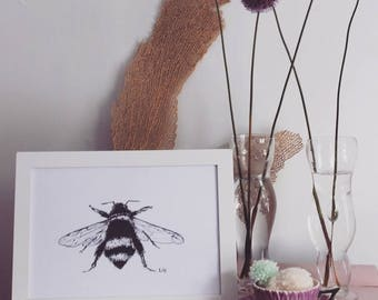 Mr Bumble Bee Print