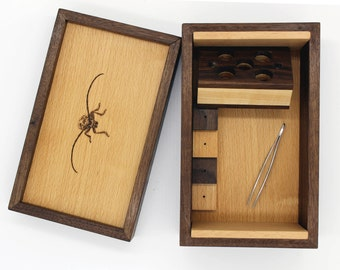 Insect Pinning Kit (Cottonwood Borer)