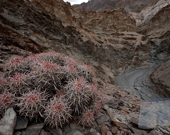 Death Valley National Park, CA, Landscape Photography