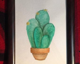 Five Cactus Brothers-watercolor framed Origial