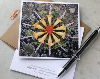 Trumpet Vine Mandala ~ One 5x5 Square Note Card (with envelope, blank inside, no message)