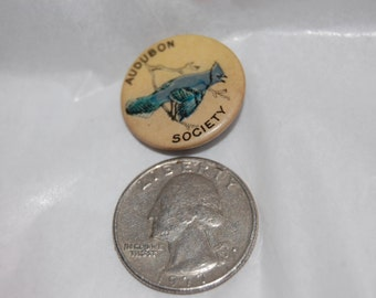 Audubon Society Stellar's Jay Celluloid Pin Back Bastian Bros. 1920's Bird Pin Audubon Society