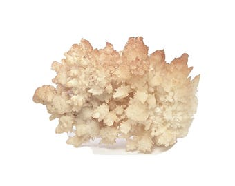 Aragonite BIG Hematite included Orange Cave Formation Spiky Crystalline Mineral Specimen from Mexico Geo Rock and Mineral Curio