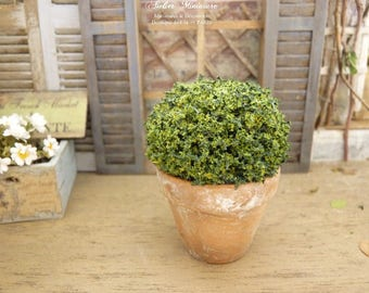 French miniature topiary, distressed clay pot, Decorative accessory for a miniature dollhouse in 1:12th scale