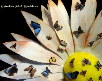 Miniature Butterfly with antennae - 1-12 scale - choose your favourite(s)